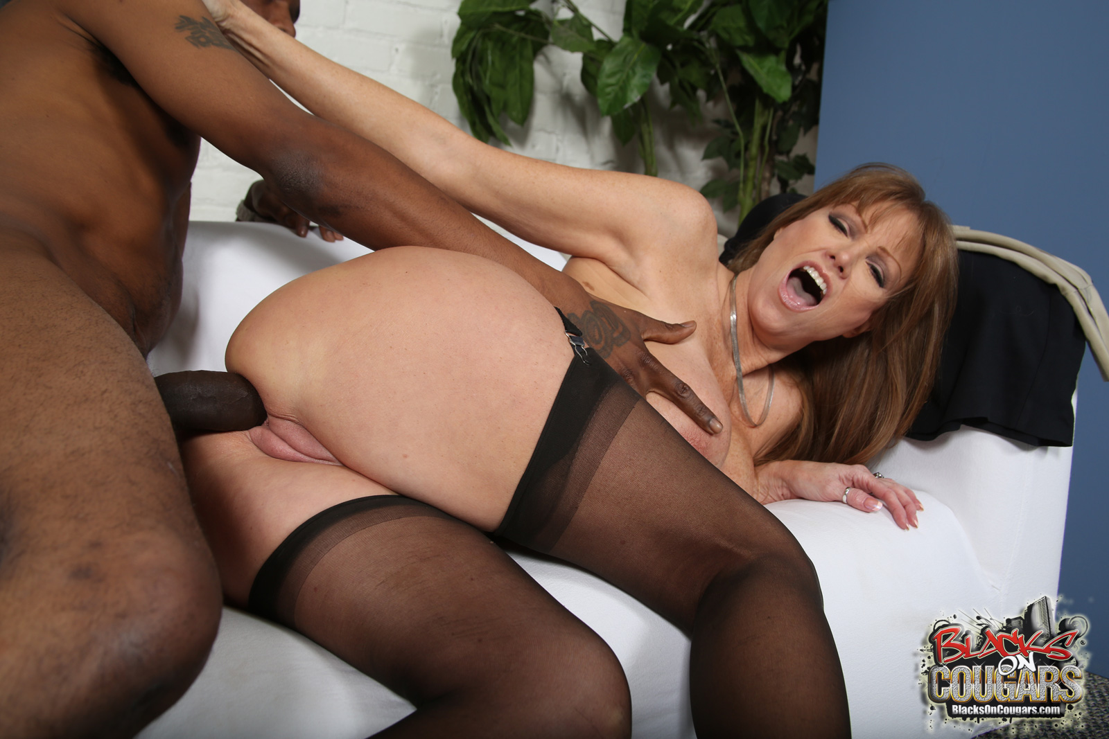 video porno black escort cougar